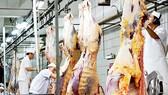 Australia hỗ trợ Việt Nam cải tiến ngành chế biến thịt