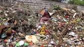 Nhật Bản, Ấn Độ hợp tác xây nhà máy điện từ rác thải