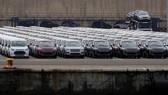 Hình ảnh tại bến xe tại cảng Valencia, Tây Ban Nha. (Nguồn: Reuters)