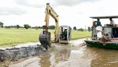Chính quyền đẩy mạnh công tác gia cố đê bao để bảo vệ lúa tại Long An. Ảnh: KIẾN VĂN