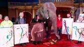 Bán đấu giá tranh của voi