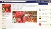 Fanpage bán dâu tươi của một bạn trẻ ở TPHCM  