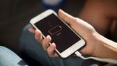 Giới chức Mỹ sờ gáy nghi án Apple