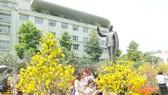 Sắc xuân quanh tượng đài Bác Hồ, TPHCM. Ảnh: CAO THĂNG