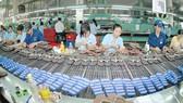 Ngành da giày của Việt Nam được hưởng lợi nhiều nhất từ CPTPP. Ảnh: CAO THĂNG