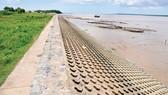 Đê biển chống ngập, sạt lở tại biển Tân Thành, huyện Gò Công, tỉnh Tiền Giang. Ảnh: THÀNH TRÍ