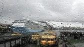 Flooding, traffic chaos as heavy rains lash Sydney