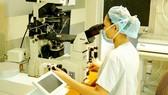 Bác sĩ Khoa Hiếm muộn Bệnh viện Từ Dũ cấy phôi thụ tinh ống nghiệm