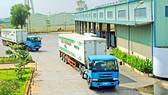 Nhiều doanh nghiệp Việt Nam chú trọng đầu tư hệ thống logistics