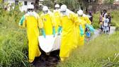 WHO đưa vaccine thử nghiệm chống Ebola đến Congo