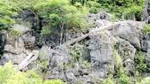 Hệ thống bậc thang này tại núi Cái Hạ sẽ tiếp tục được dỡ bỏ để trả lại nguyên trạng cảnh quan. Ảnh: TTXVN