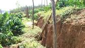Tìm nguyên nhân sạt lở đất tại Đắk Nông
