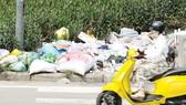 Rác thải làm bẩn môi trường sống