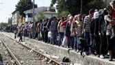 Nhóm V4 quyết phản đối hạn ngạch nhập cư