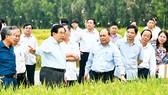 Ngành nông nghiệp hữu cơ: Vẫn loay hoay trong thế khó