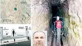 Những vụ vượt ngục táo tợn (K2):Ánh sáng cuối đường hầm