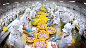 Mặt hàng thủy sản Việt Nam với nhiều thế mạnh, nhưng lâu nay chỉ nhắm đến Hoa Kỳ, Nhật Bản, Trung Quốc... mà chưa quan tâm thị trường ASEAN.