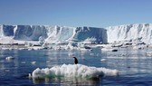 Các tảng băng trôi có thể cứu Cape Town bớt thiếu nước. Ảnh: CGTN AFRICA
