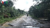 QL8A nối QL1 từ thị xã Hồng Lĩnh (Hà Tĩnh) lên cửa khẩu Quốc tế Cầu Treo đã xuống cấp nghiêm trọng.