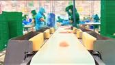 Dây chuyền sản xuất thủy sản sạch - an toàn của công ty IDI.