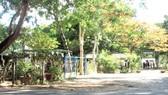 """""""Sóng ngầm"""" ở Côn Đảo: Khó xử lý cán bộ sai phạm?"""