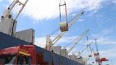 Phó Thủ tướng yêu cầu báo cáo kết quả xử lý thanh tra vụ Cảng Quy Nhơn