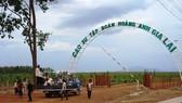 Các nhà đầu tư Việt Nam chủ yếu đầu tư sang Lào trong lĩnh vực nông, lâm nghiệp