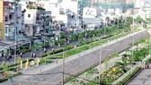 Điều chỉnh giá đất tại dự án Kênh Hàng Bàng, quận 6