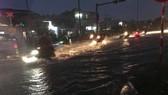 Bão số 9 khiến TPHCM mưa tầm tã không ngớt, nhiều đường ngập nặng, hàng chục cây xanh ngã đổ