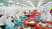 蝦類乃我國主要出口水產品。