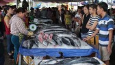 多種海產因捕撈量減少致價格上漲。
