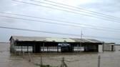 Khẩn cấp ứng phó với lũ lụt ở Đồng bằng sông Cửu Long