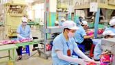 Sản xuất sạch giúp doanh nghiệp phát triển bền vững
