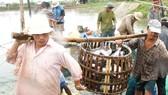 Nghiên cứu khoa học ở ĐBSCL - Nặng cá tôm, nhẹ con người