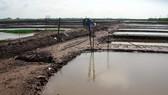 Hoàn thiện hệ thống thủy lợi ở ĐBSCL, yêu cầu cấp bách