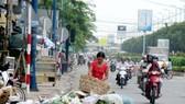 Đống rác trên đường