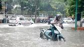 Bão Jebi gây mưa to trên diện rộng