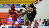 Vietnamese wushu, wrestling teams win four more gold