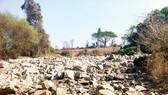 Tây Nguyên: Khô hạn, thiếu nước sản xuất