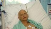 Anh: Litvinenko bị đầu độc 2 lần