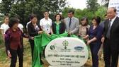 Trồng hơn 13.000 cây xanh tại Vũng Chùa