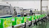 Tập đoàn Tân Hiệp Phát mời người tiêu dùng tham quan Nhà máy Number One Hà Nam