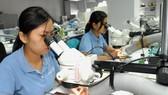 Việt Nam tăng 19 bậc trên bảng xếp hạng Chỉ số đổi mới sáng tạo toàn cầu