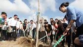 10.520 cây xanh được trồng tại di tích đường Hồ Chí Minh