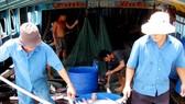 Xuất khẩu cá tra tăng trở lại