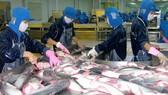 Xuất khẩu thủy sản đạt 1,4 tỷ USD