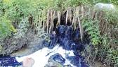 Hệ thống thủy lợi bị ô nhiễm nặng