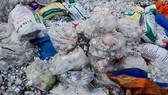Làm rõ việc mua bán rác thải y tế sai quy định