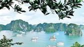 Huyền ảo vịnh Hạ Long