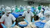 Vietnam sees 5.9 percent high of GDP growth in nine months